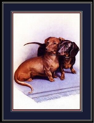 English Print Dachshund Duo Dog Puppy Dogs Puppies Art Vintage Poster Picture