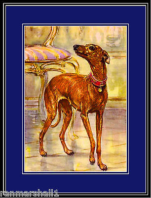 English Print Italian Greyhound Dog Puppy Dogs Puppies Art Vintage Poster