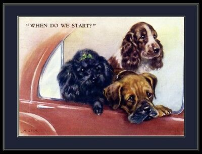 English Print Poodle Springer Spaniel Boxer Dog Dogs Puppy Puppies Poster Art