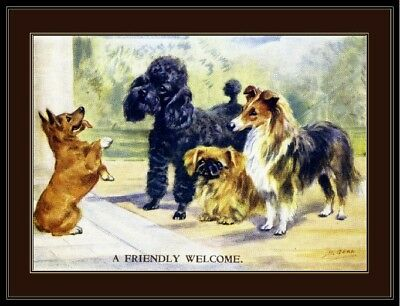 English Picture Print Corgi Poodle Pekingese Dog Dogs Puppy Puppies Poster Art