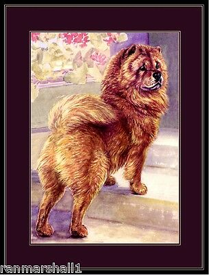 English Print Picture Chow Chow Dog Vintage Art
