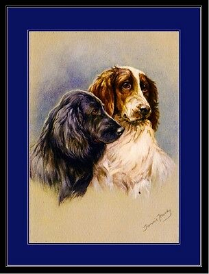 Picture Print Cocker Spaniel & English Springer Spaniel Dog Poster