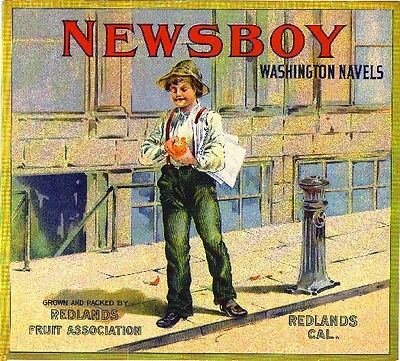 Redlands Newsboy #2 Orange Citrus Fruit Crate Label Art Print