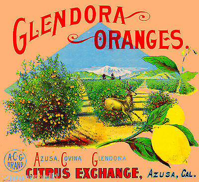 Azusa Glendora Oranges Stag Deer Orange Citrus Fruit Crate Label Art Print