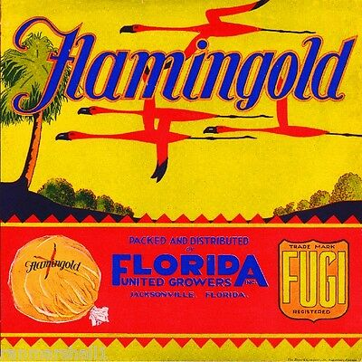 Jacksonville Florida Flamingold Flamingo Orange Citrus Fruit Crate Label Print