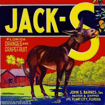 Plant City Florida Jack-S Donkey Mule Orange Citrus Fruit Crate Label Art Print