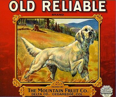 Cedaredge Colorado Reliable White Setter Dog Apple Fruit Crate Label Art Print