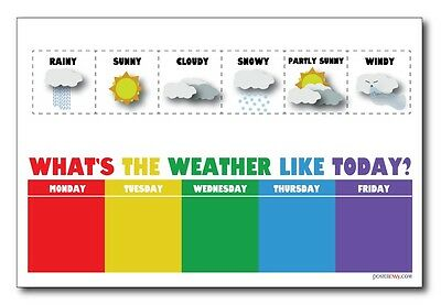 Weather Chart - NEW Classroom Science Poster