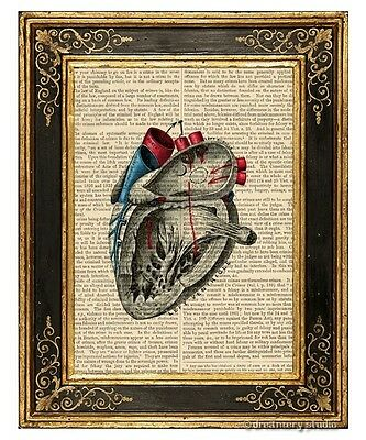 Heart #3 Art Print on Antique Book Page Vintage Illustration Medical Anatomy