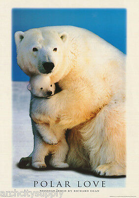 Poster :animals:polar Bears: Polar Love  - Free Shipping - #ph0054 Lw4 G