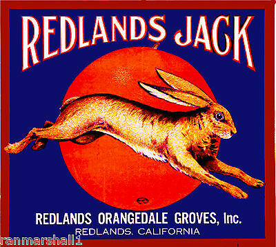 Redlands Jack Rabbit Bunny Orange Citrus Fruit Crate Label Art Print