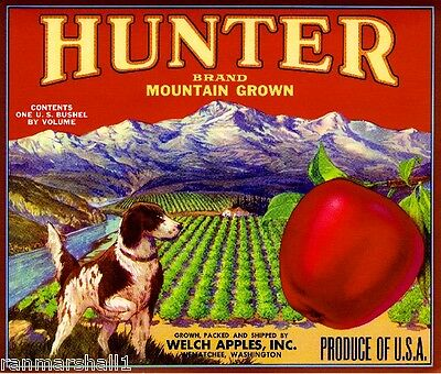 Wenatchee Washington Hunter Spaniel Dog Red Apple Fruit Crate Label Art Print