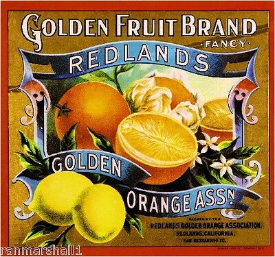 Redlands San Bernardino Golden Fruit Orange Citrus Fruit Crate Label Art Print