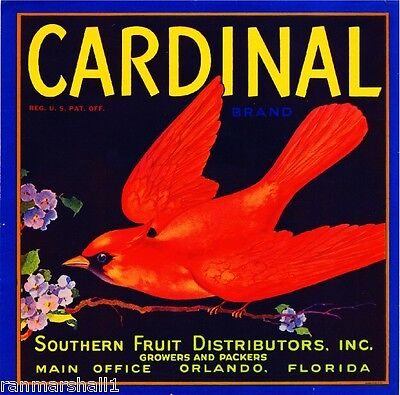 Orlando Florida Cardinal Bird Orange Citrus Fruit Crate Label Vintage Art Print
