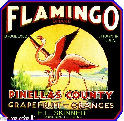 Dunedin Pinellas Florida Flamingo Bird Orange Citrus Fruit Crate Label Art Print
