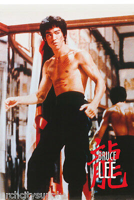 Poster: Movie Actor: Bruce Lee -  Classic Pose  Free Shipping !  #pf2088 Rc18 C