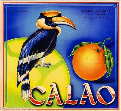Spain Espana Calao Bird Spanish Valencia Orange Citrus Fruit Crate Label Print
