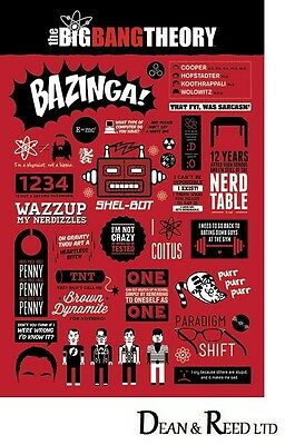 THE BIG BANG THEORY (INFOGRAPHIC) - Maxi Poster - 61cm x 91.5cm PP33299 - (526)