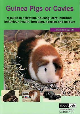 The Guinea Pig by Paperback Book