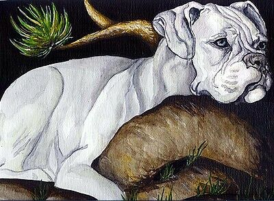 WHITE BOXER 8x10 Signed Dog Art PRINT of Original Watercolor Painting by VERN