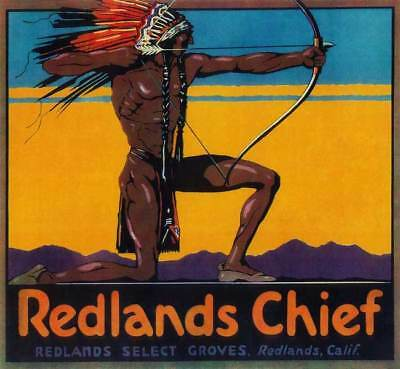 Redlands San Bernaridno Indian Chief Orange Citrus Fruit Crate Label Art Print
