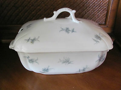 Austria large white tureen with blue flowers raised enamel and gold