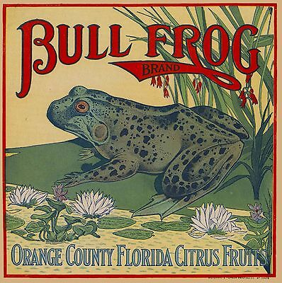 Orange County Florida Bull Frog Orange Citrus Fruit Crate Label Art Print