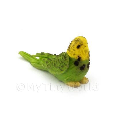 Dolls House Miniature Green And Yellow Budgie