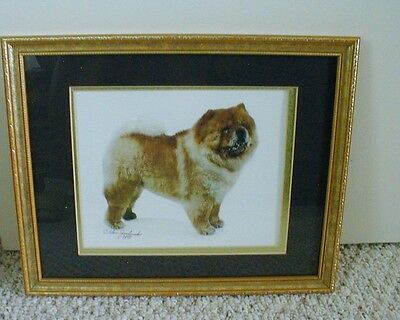 Chow Chow Dog Framed Print - C. Alan Jachinski - 1999
