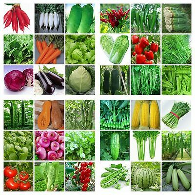 Heirloom Vegetable Garden Seeds Non Gmo / Hybrid Organic Survival Plant Bank Lot