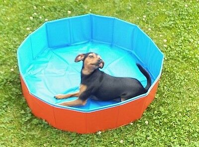 "Outdoor - Dog-Swimming Pool Hunde Pool Planschbecken 80 x 20 cm ""Top""0002"