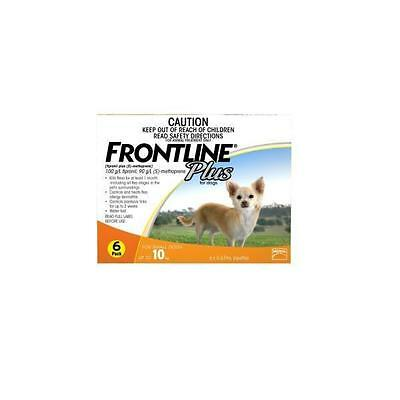 Frontline Plus 6 Pack Small Dog
