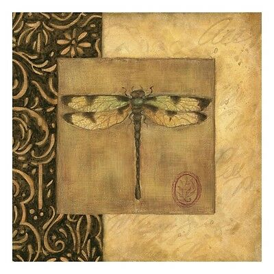 Dragonfly Square Art Print by Susan Winget, 11x11