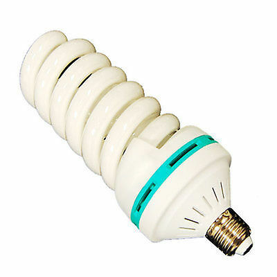 110V 65W 5500K Photo Bulb Studio Video Photography Daylight Light Lamp E26