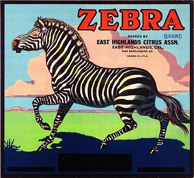 East Highlands San Bernardino Zebra Orange Citrus Fruit Crate Label Art Print