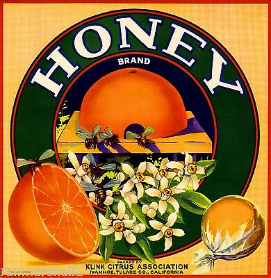 Ivanhoe Tulare County Honey Bee Orange Citrus Fruit Crate Label Art Print