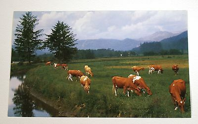 VTG 1950s CALENDAR ART LITHOGRAPH PRINT COWS ON FARM RICH MEADOWS