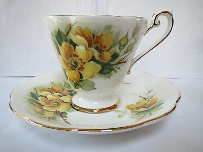 Royal Standard - Bone China - Cup and Saucer - Wild Rose
