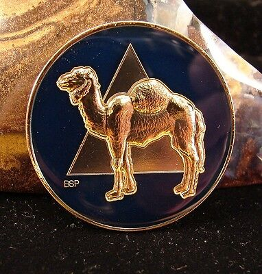Alcoholics Anonymous AA NA Camel BLUE  Medallion Token coin Sober chip Sober B