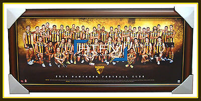 Hawthorn 2014 TEAM PRINT FRAMED AFL Official Licensed Hodge Mitchell Rioli