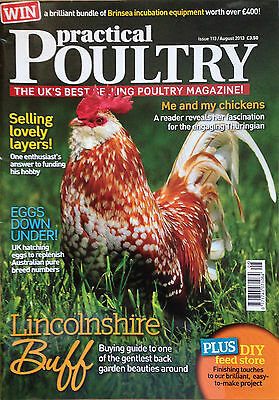 Practical Poultry-Game-Chicken-Lincolnshire Buff-Rock Bantams-Aug 13-#113