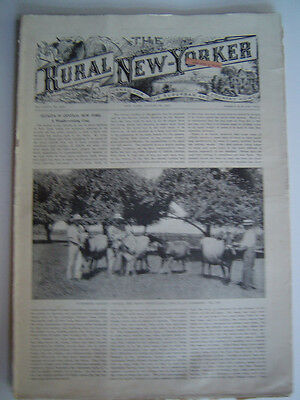 The RURAL NEW YORKER - A Journal For The Suburban & Country Home - Aug. 30, 1913