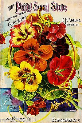 1896 Perry Seed  Vintage Flowers Seed Packet Catalogue Advertisement Poster