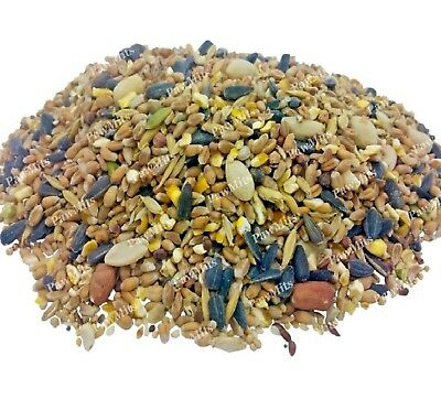SPECIAL WILD BIRD SEED - (500g - 20kg) - Garden Food Mix vf Premium Feed doby kg