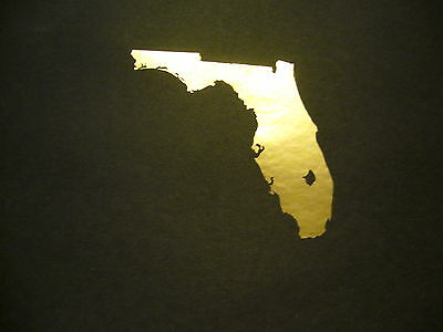 USA State of Florida Map in Gold Chrome vinyl window laptop decal bumper sticker