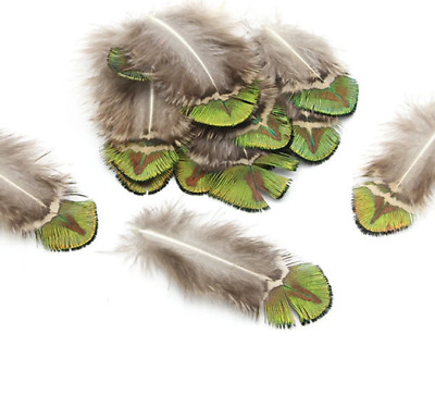 10pcs Natural Green Peacock Plumage Feathers DIY Craft Millinery Fly Fishing