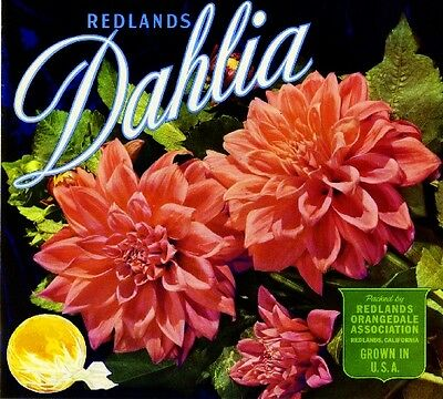 Redlands Dahlia Flowers Orange Citrus Fruit Crate Label Vintage Art Print