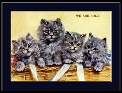 English Picture Blue Persian  Kitten Cat Art Print