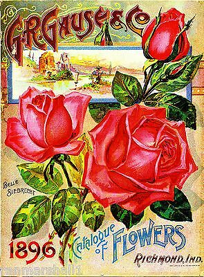 1896 - G.R. Gause Vintage Flowers Seed Packet Catalogue Advertisement Poster