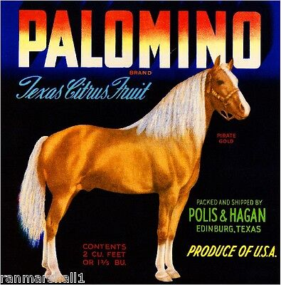 Edinburg Texas Palomino Horse Pirate Gold Orange Citrus Fruit Crate Label Print